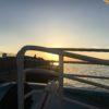 初めてのチヌ前打ちの聖地?大阪南港【バラ石】で前打ち大会に参加してきました。あくまで参加しただけな。あとおまけ釣行【ヘチ】【前打ち】。